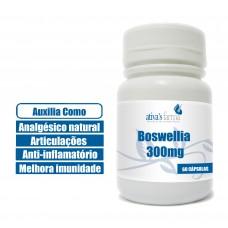 Boswellia 300mg 60 Cápsula